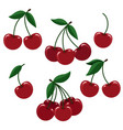 cherry berry set for logo vector image