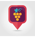 Grapes flat pin map icon Fruit vector image vector image