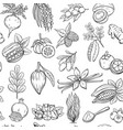 hand drawn superfood seamless pattern vector image vector image