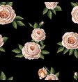 seamless pattern with english roses vector image vector image