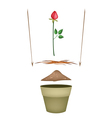 Terracotta Flower Pots with Soil and Red Rose vector image