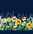 border with daffodils and wild flowers vector image