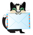 cat with letter vector image vector image