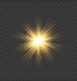 gold glitter star burst with sparkles vector image vector image