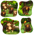 Monkeys living in the deep forest vector image