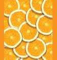 orange fruit pattern vector image vector image