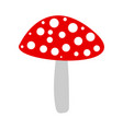 poisonous dangerous mushroom fly agaric vector image vector image