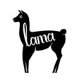 lama with the inscription llama silhouette logo vector image vector image