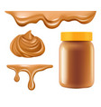 peanut butter healthy breakfast caramel or vector image vector image