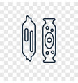 salami concept linear icon isolated on vector image