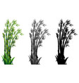 set of bamboo plant vector image vector image