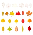 Set of the yellow autumn leaves design vector image vector image