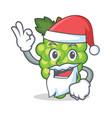 santa green grapes mascot cartoon vector image