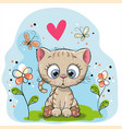 cute kitten with flowers vector image vector image