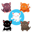 set of cats cute collection of stickers of five vector image