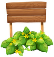 Wooden sign with yellow flowers vector image vector image