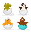 baanimals hatch eggs or cartoon pets hatching vector image vector image