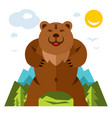 bear standing on the feet flat style vector image