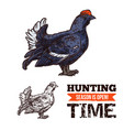 capercaillie bird sketch hunting season poster vector image vector image