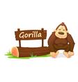 Cartoon zoo gorilla vector image vector image