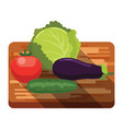 fresh cabbage tomato cucumber eggplant on a vector image vector image