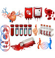 Human blood and organs vector image