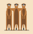 meerkats are strong in unity vector image