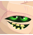 scary cartoon monster mummy face vector image vector image