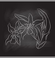 sg170104-green bahand drawing of orchid on black vector image vector image