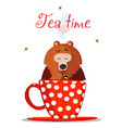 tea time cartoon teddy bear character sit in mug vector image vector image