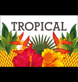tropical flower leaves animal card vector image vector image
