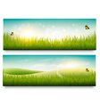 Two beautiful summer meadow landscape banners with vector image vector image