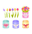 boxes and tulips collection vector image vector image