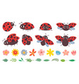 cartoon ladybug cute ladybugs with flowers and vector image vector image