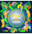 Digital brazil hot summer with colored vector image vector image