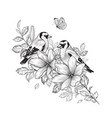 hand drawn goldfinches sitting on flower vector image