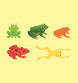 printexotic amphibian set frogs in different vector image
