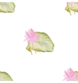 Seamless pattern with flowers lotus vector image