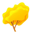 yellow bright autumn tree with a lush crown thin vector image vector image