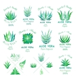 Aloe vera design elements Emblems collection vector image vector image
