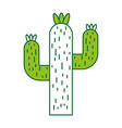 cactus desert isolated icon vector image