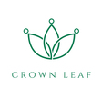 concept icon crown in leaf vector image