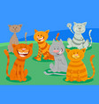cute cats or kittens characters group vector image vector image