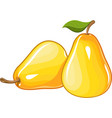 Juicy ripe pear vector image vector image
