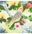 seamless texture birds corella and budgerigars vector image vector image