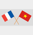 socialist republic of vietnam and france flags vector image