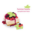 summer sweet cheesecake with berry fruits syrop vector image vector image