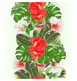 tropical border seamless background floral vector image vector image