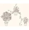 Garden set with 3 plants in flowerpot vector image vector image
