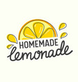 homemade lemonade poster with doodle style citrus vector image